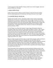 contoh proposal dikti lolos 2009.doc