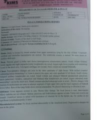 PET-CT-Scan-Report.pdf