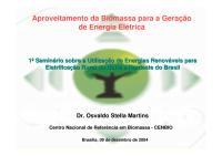 1°SeminárioFRE_ANEEL_CENBIO_Biomassa_041209.pdf