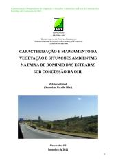 Relatório Final (Fernão Dias).doc